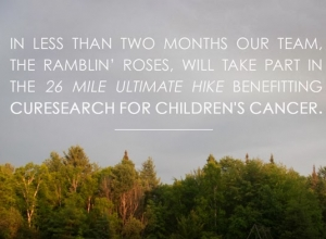 We Appreciate Your Support! The Ultimate Hike benefitting CureSearch for Children's Cancer